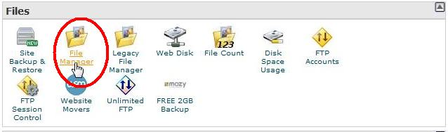 BlueHost file manager icon for doing backup