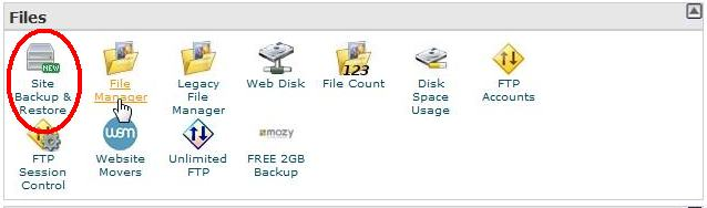 backup icon on bluehost control panel